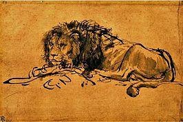 Kaapse Leeuw