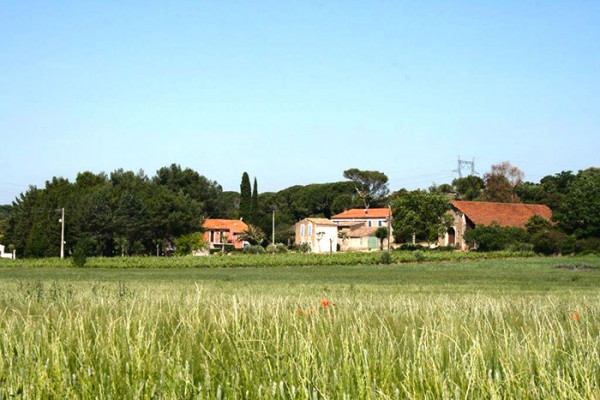 Domaine La Grange - Pays d'Oc - Languedoc